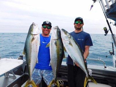 Kingfish & Downriggers